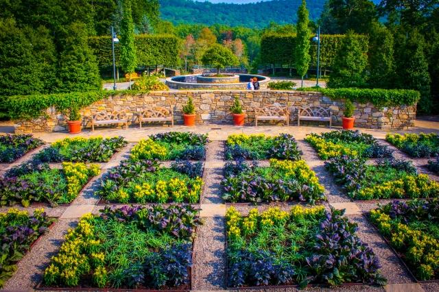 arboretum-sunset-027